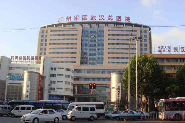 原广州军区武汉总医院