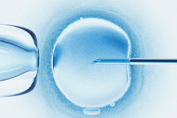 输卵管堵塞和老公精子活力低,试管婴儿带来好孕